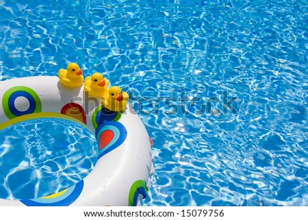 how to get ducks out of your pool