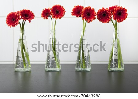 Four vases with red gerberas daisies on black wooden tables.