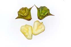 Four water caltrop or water chestnut fruit on white background.