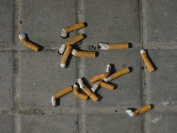 Fourteen smoked cigarette butts have been thrown on to a square tiled street floor. Image