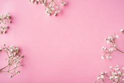 Fowers on a pink background. Flat Lay. Copy space.