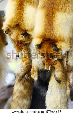 Fox fur collar sold in shop