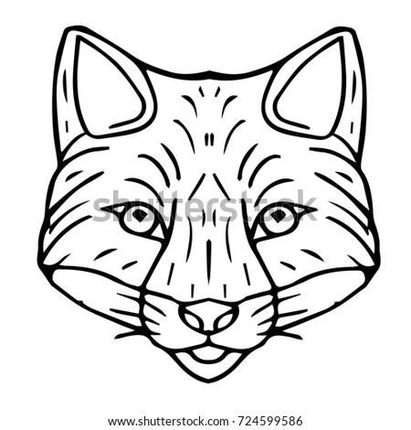 Lynx Sketch Bobcat Illustration Stock Photo 369816233