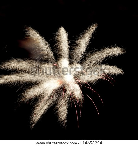 fox tail shape of fireworks during chinese holiday