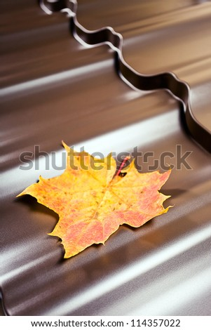 Fragment of a new metal roof, focus on a leaf