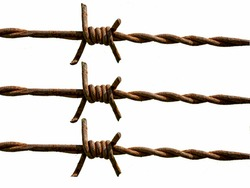 Fragment of barbed wire on a white background