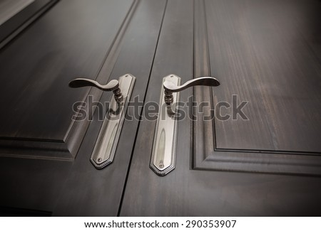 fragment of closeup view of  a beautiful natural wood closed doors and stylish amazing door handles