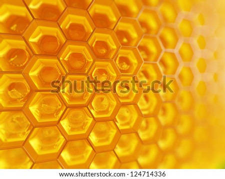 Fragment of honeycomb with full  cells in bright sunlight.