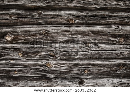 fragment of the old country house of natural wooden timbers without coloring with a number of snags