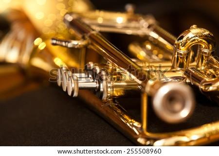 Fragment trumpet closeup #255508960