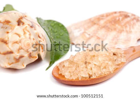 Fragrant sea salt in the wooden spoon, wet leaf and seashells