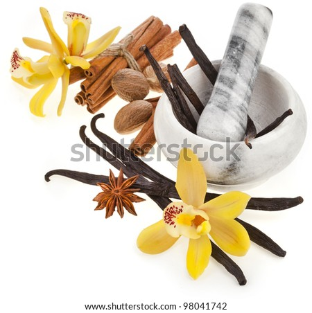 Fragrant spices set  with mortar  isolated on white background