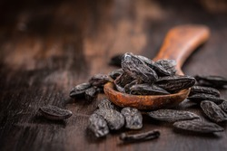 Fragrant tonka beans for baking and cooking on dark background