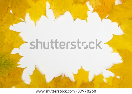 Frame built from the autumn leaves of yellow color