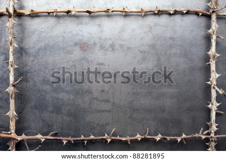Frame from prickly dry branches on metal texture background
