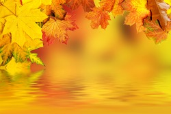 Frame from vivid colorful autumn leaves with water reflection, natural seasonal background