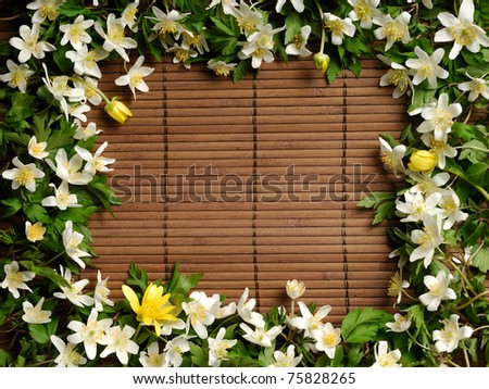 Frame made from white and yellow spring flowers on wooden brown background - stock photo