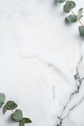 Frame made of eucalyptus leaves on marble background. Wedding invitation card mockup, minimal style.