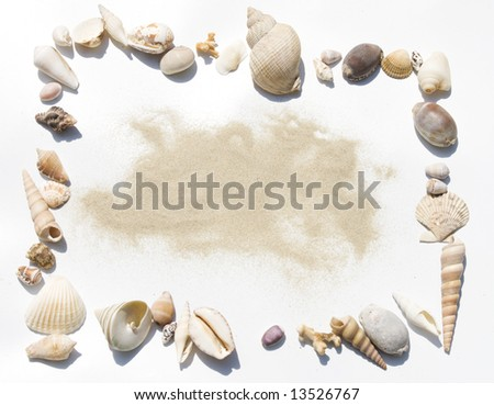 frame made of exotic shells on white background with sand in middle