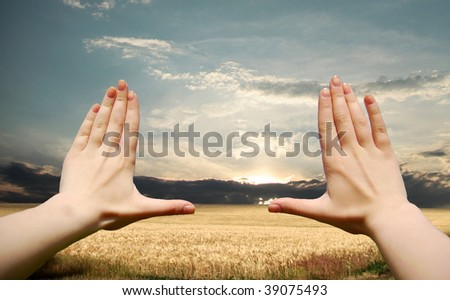Frame made of hands at wheat field at sunset