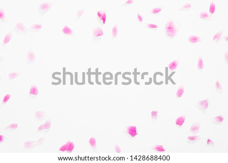 Frame made of pink roses petals on white background. Flat lay, top view. Valentine's background. Love, romance concept.
