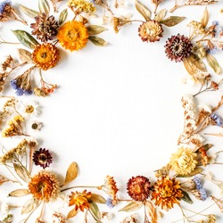 Frame made of yellow dry flowers, branches, leaves and petals on white background. Flat lay, top view