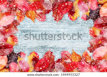 Frame of autumn leaves on a white wooden background witn snow - a beautiful template for an autumn card or congratulations