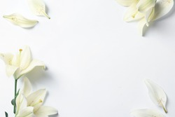 Frame of beautiful lily flowers on white background, flat lay. Space for text