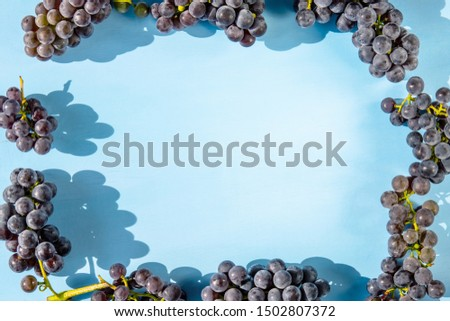 frame of bunches of purple grapes with a blue background, copy space