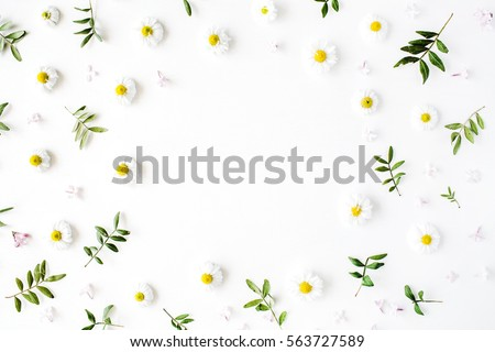 Frame of chamomiles, branches, leaves and lilac petals on white background. Flat lay, top view #563727589