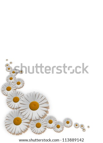frame of daisies - stock photo