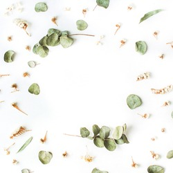 Frame of dry and fresh eucalyptus branches on white background. Flat lay, top view