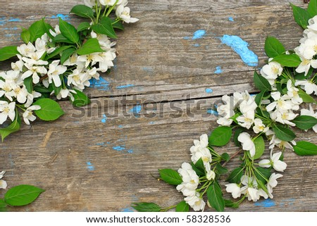 Frame of flowering branches on a wooden background