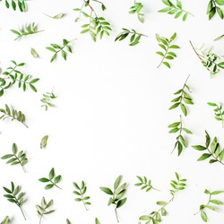 Frame of green branches and leaves on white background. Flat lay, top view
