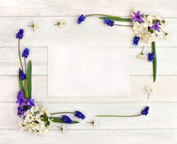 Frame of hyacinths (Hyacinthus), muscari and blossom cherry tree on a white wooden background and blank sheet with space for text. Top view, flat lay.