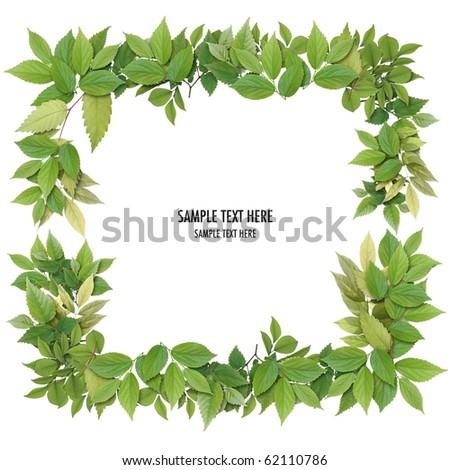 Frame of leaf