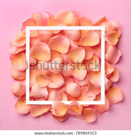 Frame of pink rose petals and space for text. Valentines day concept #789869353