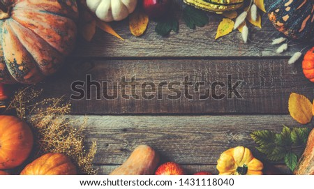 Frame of pumpkin, corn, apples with leaves and herbs on the rural table background. Concept of biological, bio products, bio ecology, vegetarians food. #1431118040
