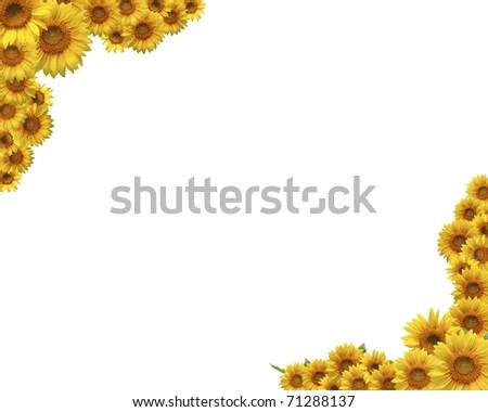 Sunflower Frame Frame of Sunflower