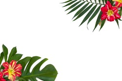 Frame of tropical leaves palm tree and monstera with red yellow flowers on a white background with space for text. Top view, flat lay.