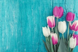 Frame of tulips on turquoise rustic wooden background. Spring flowers. Greeting card for Valentine's Day, Woman's Day and Mother's Day. Top view.