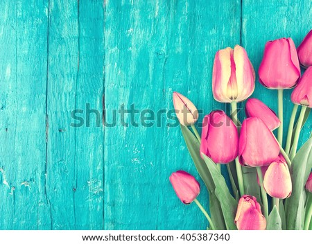 Frame of tulips on turquoise rustic wooden background. Spring flowers. Spring background. Valentine\'s Day and Mother\'s Day background. Top view.