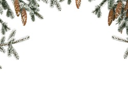 Frame of twigs of christmas tree ( spruce ) with cones covered hoarfrost and in snow on a white background with space for text