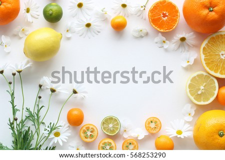 Frame of various citrus fruits and marguerite flower on white background,top view  #568253290