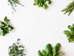 Frame of various fresh green kitchen herbs. Parsley, mint, savory, basil, rosemary, thyme over white background, top view. Spring or summer healthy vegan cooking concept