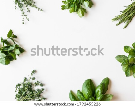 Frame of various fresh green kitchen herbs. Parsley, mint, savory, basil, rosemary, thyme over white background, top view. Spring or summer healthy vegan cooking concept Photo stock ©