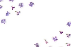 Frame of violet blue flowers lilac ( Syringa vulgaris ) on a white background with space for text. Spring flowers. Top view, flat lay