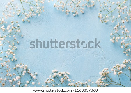Frame of white flowers, gypsophila. Flat lay composition. Blue background. Top view. Copy space. #1168837360