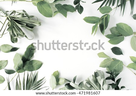 frame with flowers, branches, leaves and petals isolated on white background. flat lay, overhead view #471981607