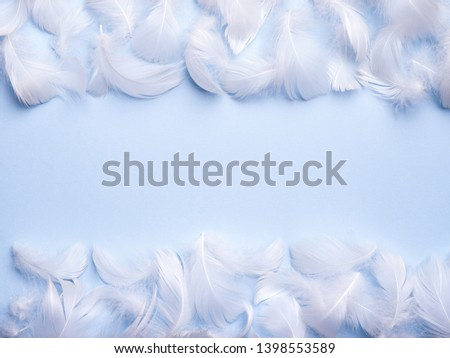 Frame with soft airy feathers on pastel blue background. Pureness, softness concept. Abstract gentle natural background for design. Top view, flat lay with copy space for text.  #1398553589